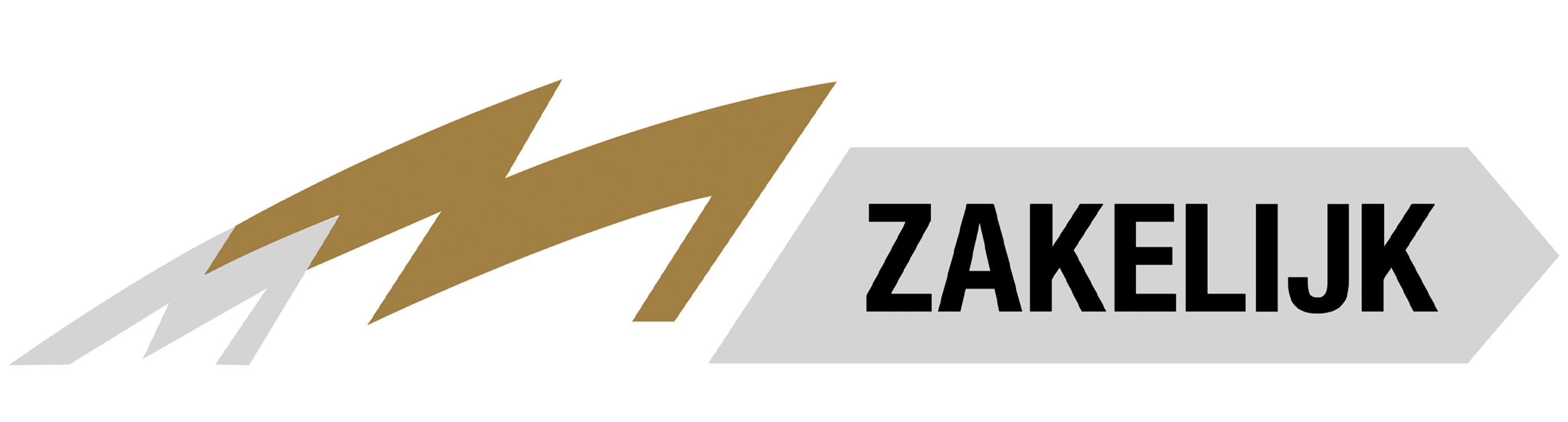 logo-munsterhuis-zakelijkkopie
